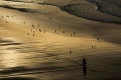 Philip Acland-Beach Walker-10