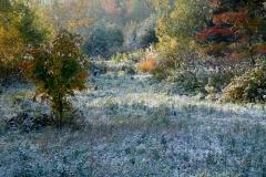 Jan Davis-First Snow Nova Scotia-10