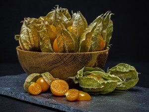 Stephen Tattersall-Physalis in Abundance-10
